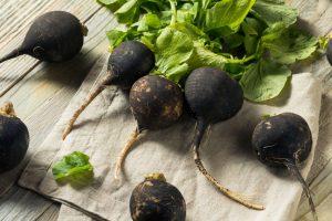 Le radis noir et ses bienfaits, un légume détox qui va faire parler de lui ses prochains mois